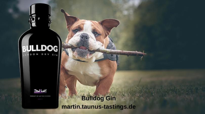 Eine Flasche Bulldog Gin, in Hintergrund eine englische Bulldogge
